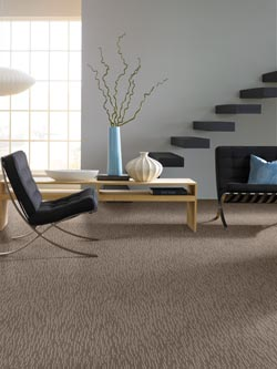 carpet flooring in houston